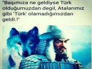 Başımıza Ne Geldiyse Türk