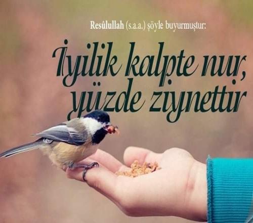 İyilik Sözleri